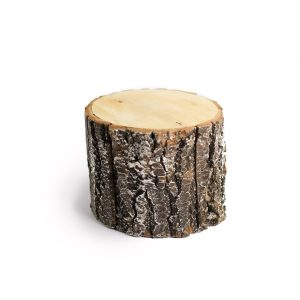 Tronquinho de madeira nevado Natural  G