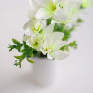 Arranjo flor do campo Branco