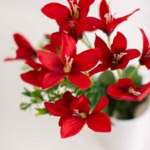 Arranjo flor do campo Vermelho