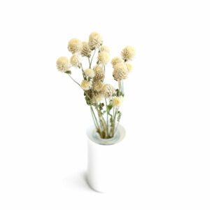 Florzinha rústica Natural Off white
