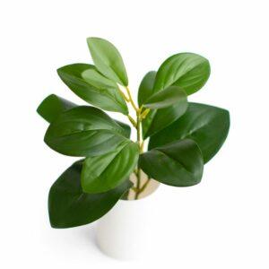 Folhagem rústica - Modelo II Verde