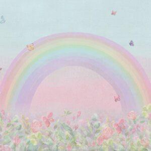 Fundo fotográfico arco íris II Colorido  G