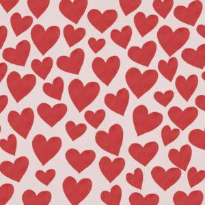 Fundo fotográfico coração III Vermelho  G